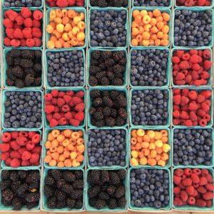 Variables-boites contenant des donnees-aliments
